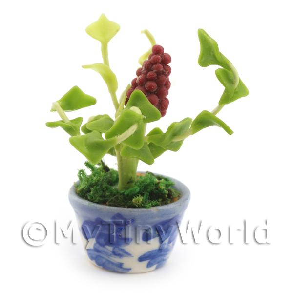 Dolls House Miniature Red Grape Plant