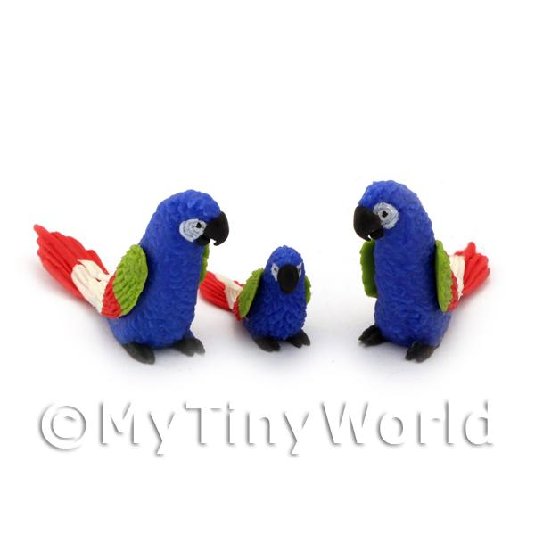 Dolls House Miniature  | 3 Blue Dolls House Miniature Parrots with Multi-Coloured Wings and Red Tails