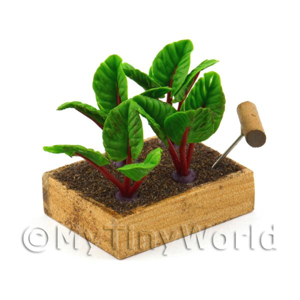 Dolls House Miniature  | Miniature Garden Wooden Crate With Growing Beetroots