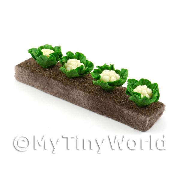 Dolls House Miniature  | Strip of 4 Miniature Cauliflowers For The Allotment