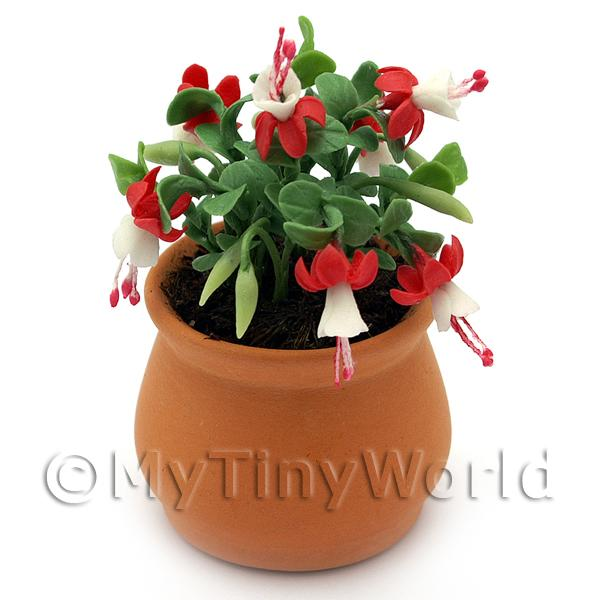 Dolls House Miniature  | Miniature Red Fuchsias in a Terracotta