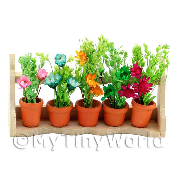 Dolls House Miniature  | Dolls House Miniature 5 Plants On A Wood Plant Stand