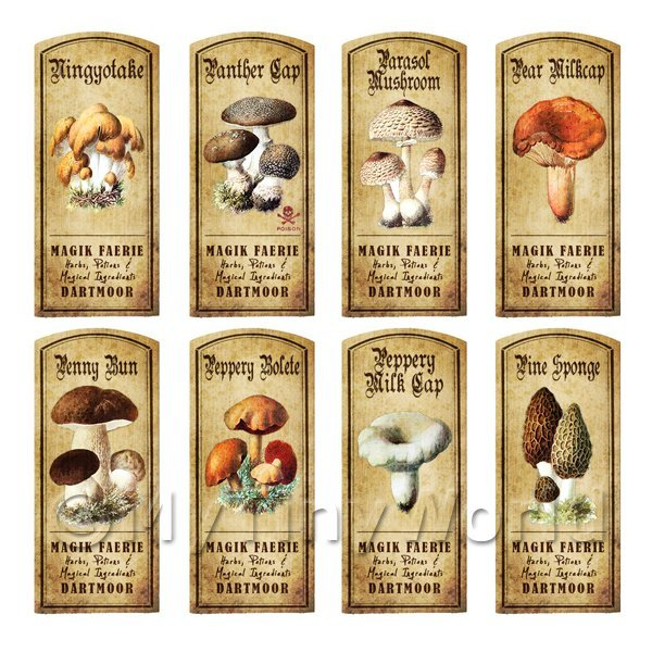 Dolls House Apothecary 8 Fungus / Mushroom Colour Labels Set 3