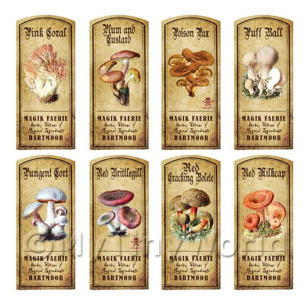 Dolls House Apothecary 8 Fungus / Mushroom Colour Labels Set 4