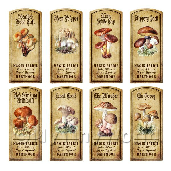 Dolls House Apothecary 8 Fungus / Mushroom Colour Labels Set 6