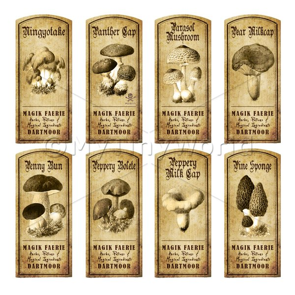Dolls House Miniature Apothecary 8 Fungus / Mushroom Labels Set 3