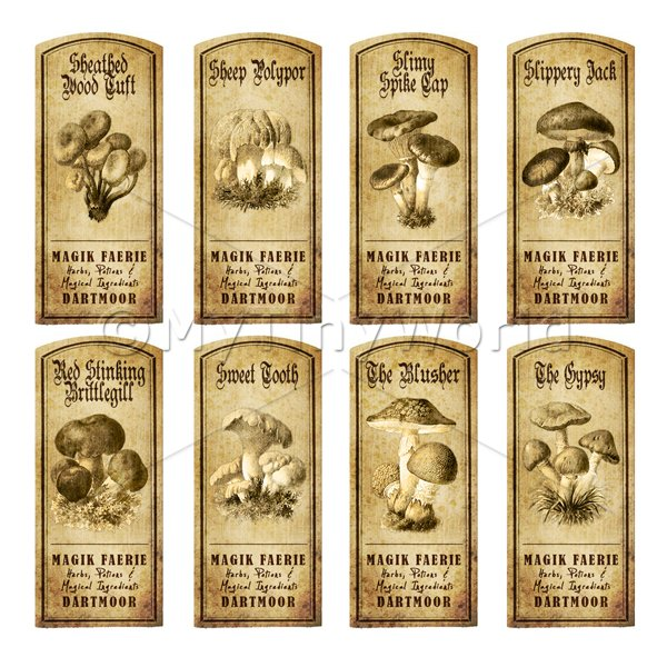 Dolls House Miniature Apothecary 8 Fungus / Mushroom Labels Set 6