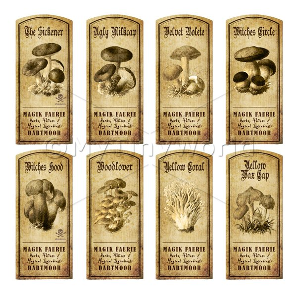 Dolls House Miniature Apothecary 8 Fungus / Mushroom Labels Set 7