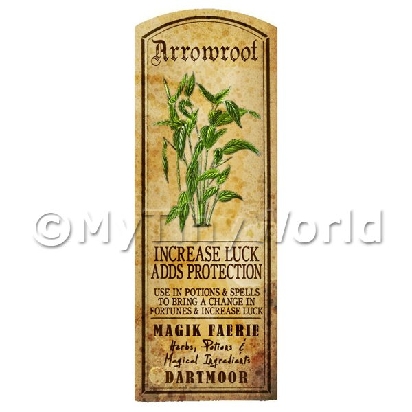 Dolls House Miniature  | Dolls House Herbalist/Apothecary Herb Arrowroot Long Colour Label