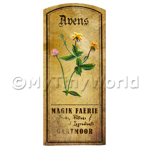 Dolls House Miniature  | Dolls House Herbalist/Apothecary Avens Herb Short Colour Label