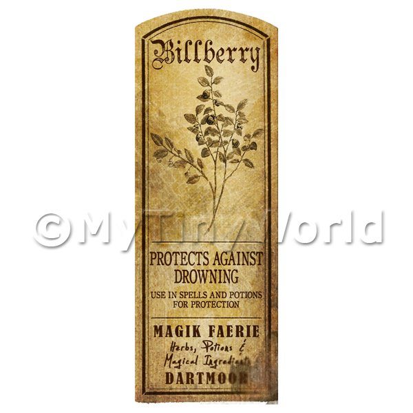 Dolls House Miniature  | Dolls House Herbalist/Apothecary Bilberry Plant Herb Long Sepia Label