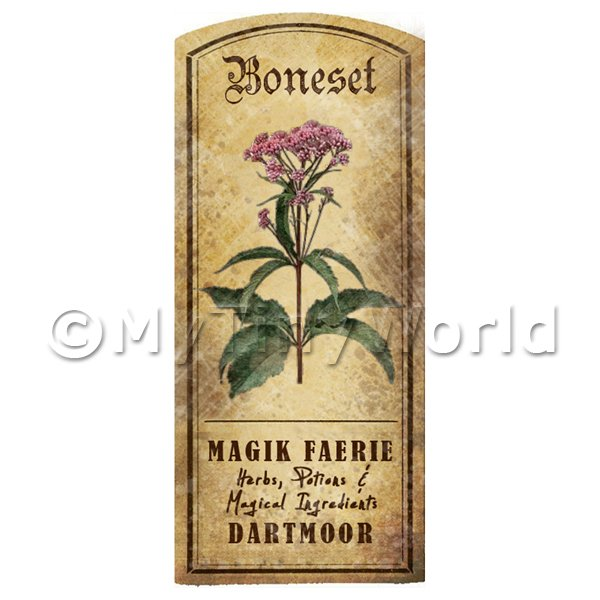 Dolls House Miniature  | Dolls House Herbalist/Apothecary Boneset Herb Short Colour Label