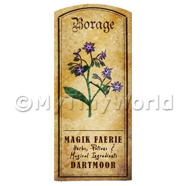Dolls House Herbalist/Apothecary Borage Herb Short Colour Label