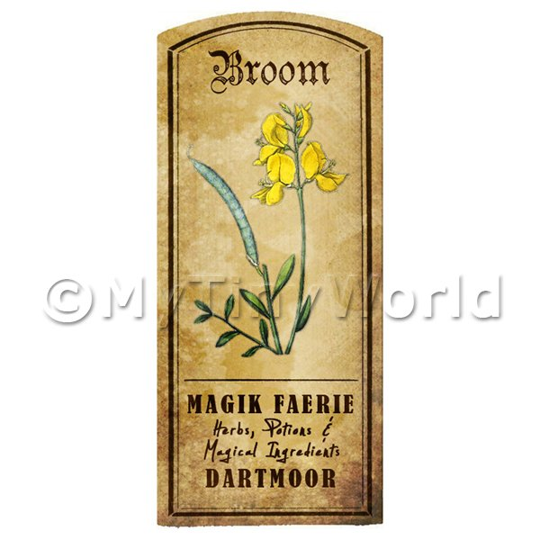 Dolls House Miniature  | Dolls House Herbalist/Apothecary Broom Herb Short Colour Label