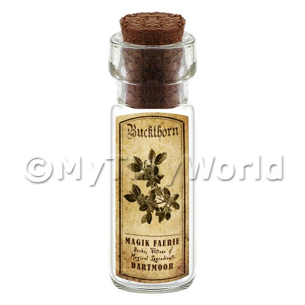 Dolls House Apothecary Buckthorn Herb Short Sepia Label And Bottle