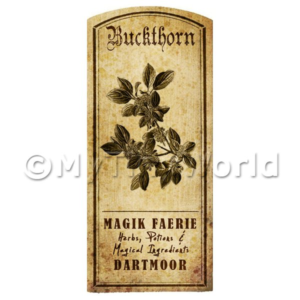 Dolls House Herbalist/Apothecary Buckthorn Herb Short Sepia Label