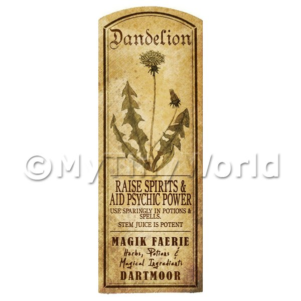 Dolls House Miniature  | Dolls House Herbalist/Apothecary Dandelion Plant Herb Long Sepia Label