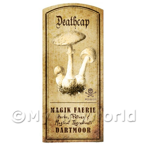 Dolls House Miniature Apothecary Deathcap Fungi Label