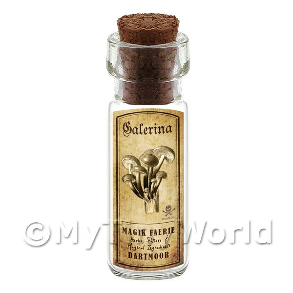 Dolls House Miniature Apothecary Galerina Fungi Bottle And Label