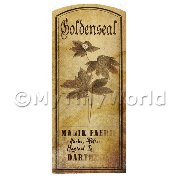 Dolls House Herbalist/Apothecary Goldenseal Herb Short Sepia Label