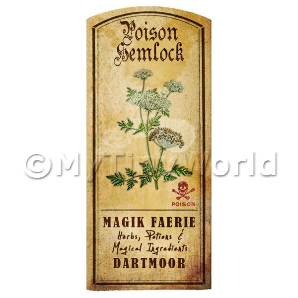 Dolls House Miniature  | Dolls House Herbalist/Apothecary Hemlock Herb Short Colour Label