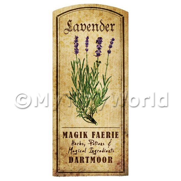 Dolls House Miniature  | Dolls House Herbalist/Apothecary Lavender Herb Short Colour Label