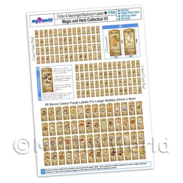 Dolls House Miniatures  | Dolls House Full Set of 168 Color And Sepia Fungi Label A4 Value Sheet