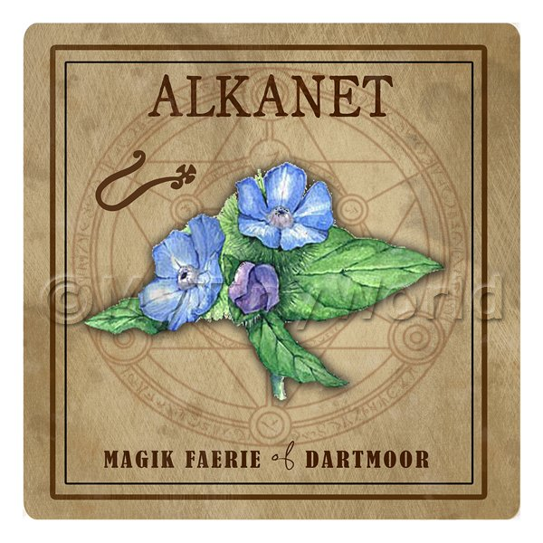Dolls House Herbalist/Apothecary Square Alkanet Herb Label