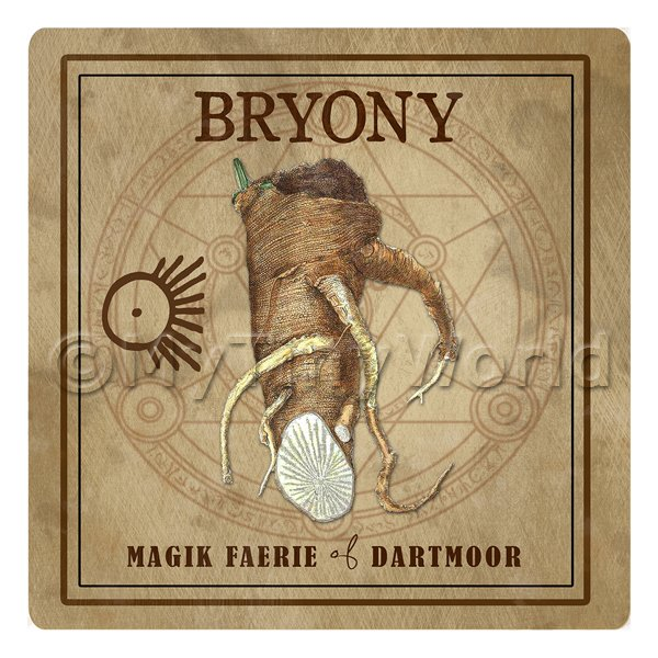 Dolls House Herbalist/Apothecary Square Bryony Herb Label