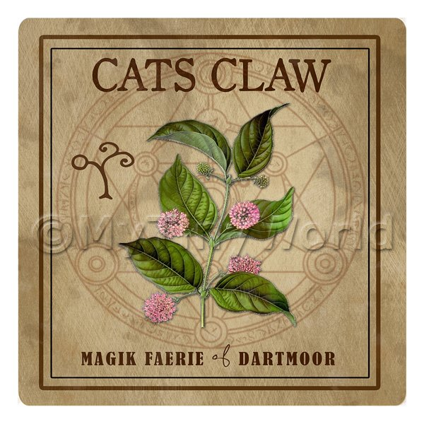Dolls House Herbalist/Apothecary Square Cats Claw Herb Label