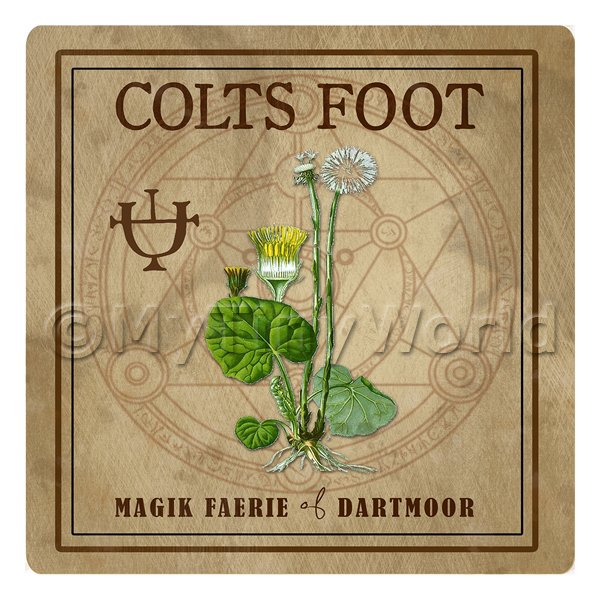 Dolls House Herbalist/Apothecary Square Colts Foot Herb Label