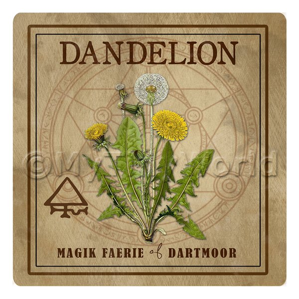 Dolls House Herbalist/Apothecary Square Dandelion Herb Label