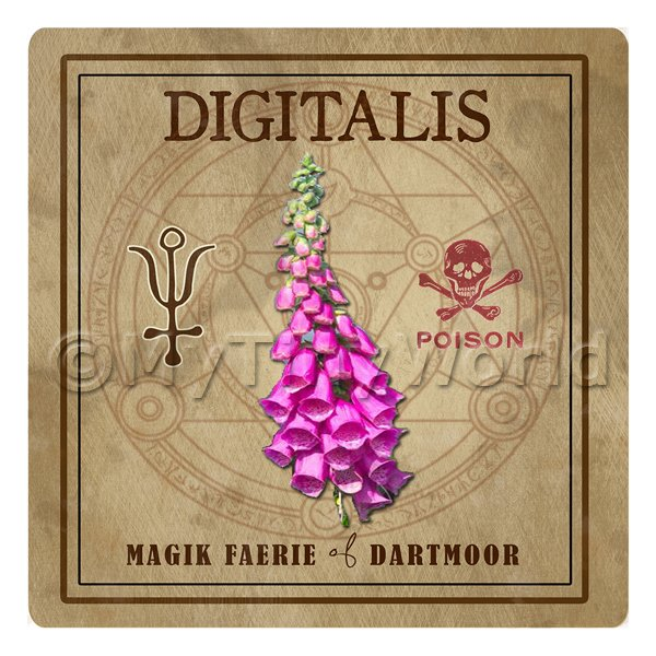 Dolls House Herbalist/Apothecary Square Fox Glove Herb Label