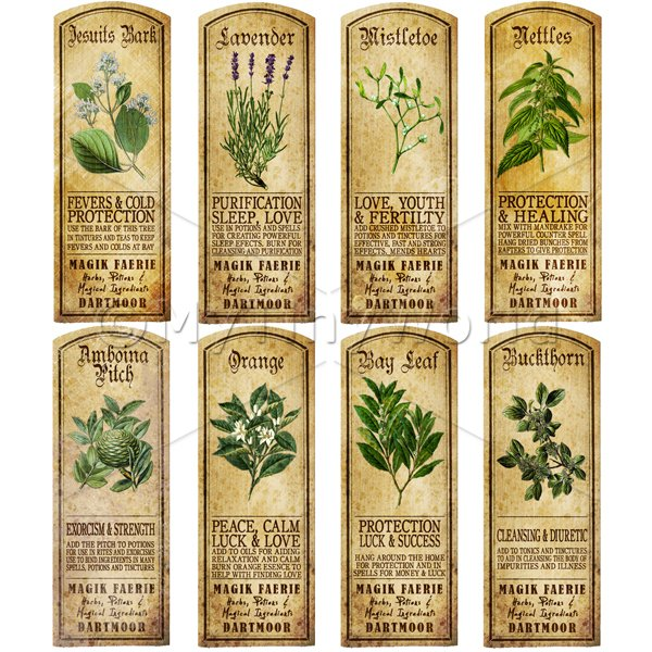 Dolls House Miniature  | Dolls House Herbalist/Apothecary Long Herb Colour Label Set 6