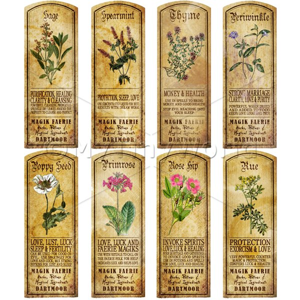 Dolls House Miniature  | Dolls House Herbalist/Apothecary Long Herb Colour Label Set 8