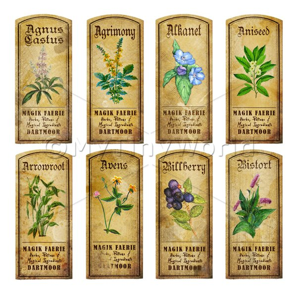 Dolls House Herbalist/Apothecary Short Herb Colour Label Set 1
