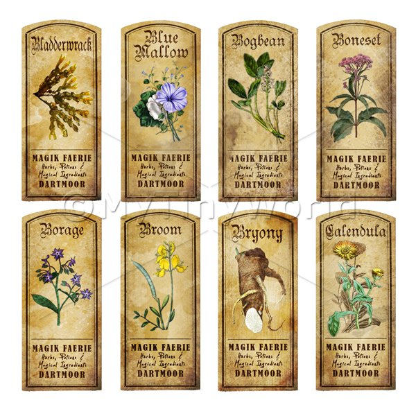 Dolls House Herbalist/Apothecary Short Herb Colour Label Set 2