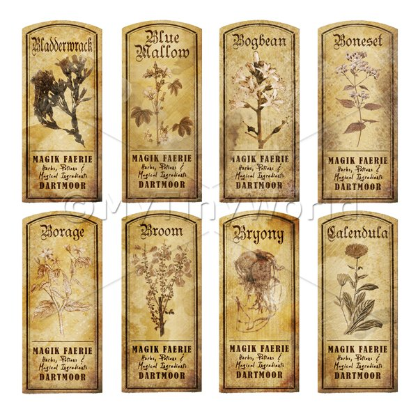 Dolls House Herbalist/Apothecary Short Herb Sepia Label Set 2