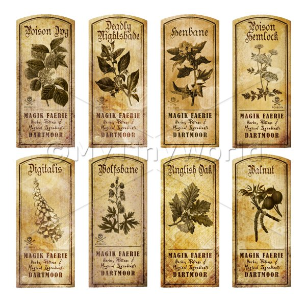 Dolls House Herbalist/Apothecary Short Herb Sepia Label Set 7