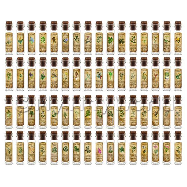 Dolls House Miniature  | Dolls House Apothecary Set Of 64 Herb Long Colour Label And Bottles