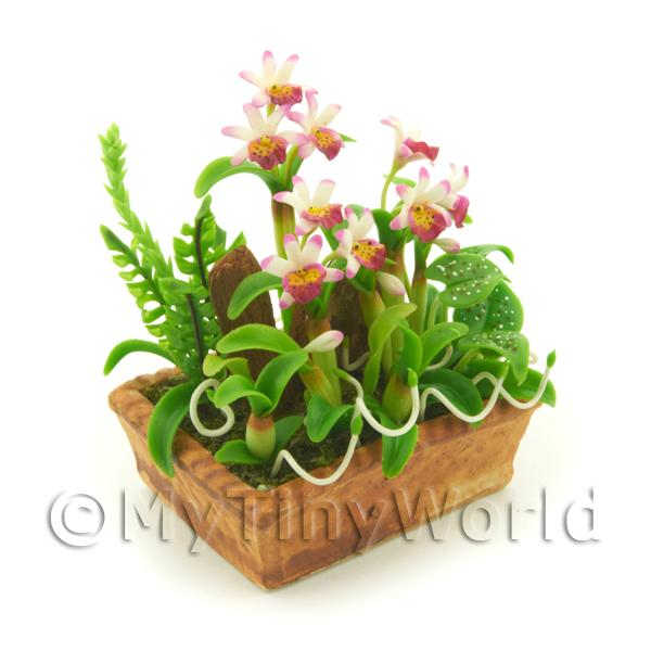 Dolls House Miniature White /Pink/Dark Pink Cattleya Orchid Display