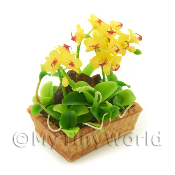 Dolls House Miniature  | Dolls House Miniature Yellow / Red Dendrobium Orchid Display