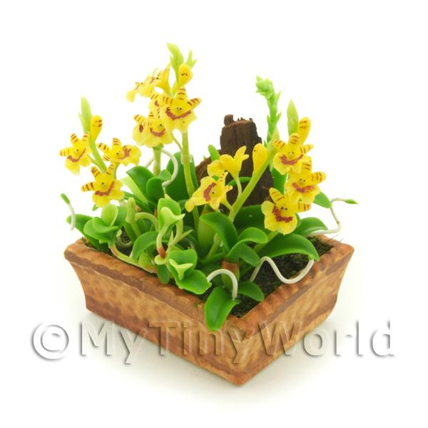1/12 Scale Dolls House Miniatures  | Dolls House Miniature Yellow Striped Dendrobium Orchid Display