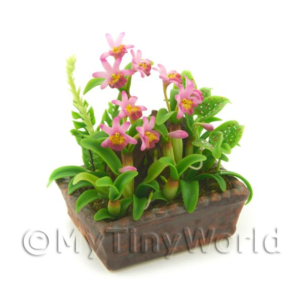 1/12 Scale Dolls House Miniatures  | Dolls House Miniature Pink Shades Demdrobium Orchid Display