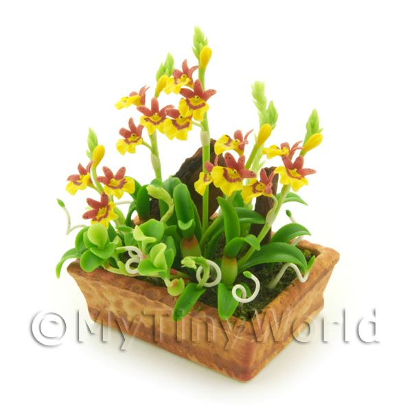 1/12 Scale Dolls House Miniatures  | Dolls House Miniature Dusty Red / Yellow Demdrobium Orchids