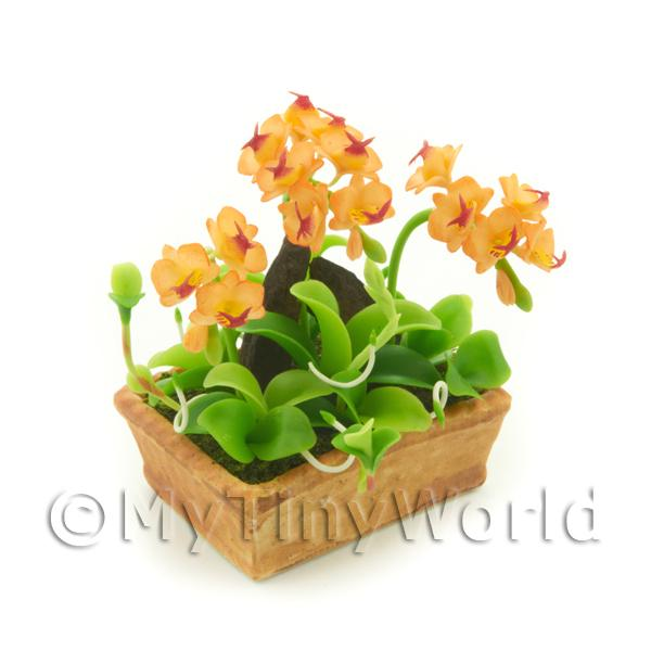 1/12 Scale Dolls House Miniatures  | Dolls House Miniature Peach / Red Cattleya Orchid Display