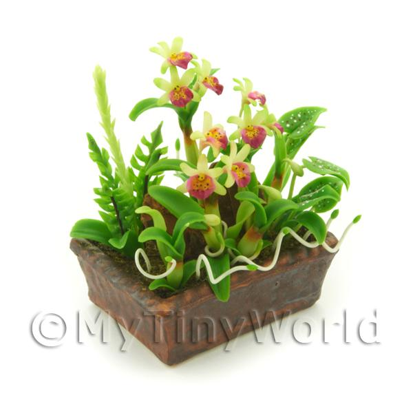 Dolls House Miniature Pale Green / Pink Demdrobium Orchids