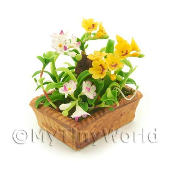 Dolls House Miniature Mixed White / Orange Cattleya Orchids