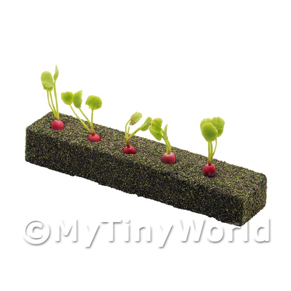 Dolls House Miniature  | Strip of 5 Miniature Radish For The Allotment