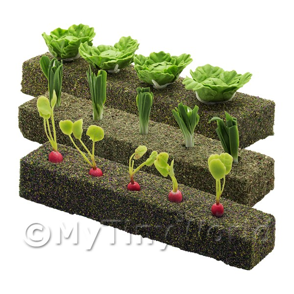 Dolls House Miniature  | 3 Strips of Various Miniature Vegetables For The Allotment
